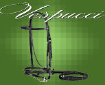 Vespucci Plain Raised Dressage Pony Bridle with Flash
