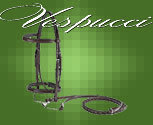 Vespucci Plain Raised Hunter Bridle