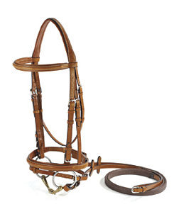 Vespucci Fancy Raised Jumper Bridle with Flash
