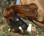 Equilibrium Tri Zone Tendon Boots