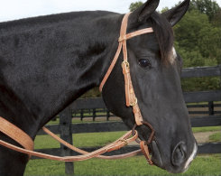 Weaver Quick Change Browband Headstall