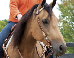 Weaver Basketweave Flat Sliding Ear Headstall with Rawhide