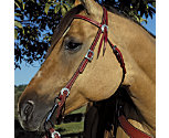 Weaver Trailblazer Browband Headstall