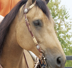 Weaver Sliding Ear Headstall with Rawhide and Conchos
