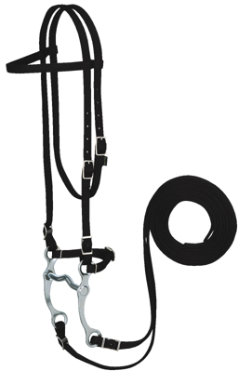 Weaver Nylon Browband Bridle Best Price