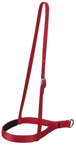 Weaver Nylon Noseband Best Price