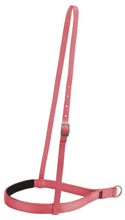 Weaver Elite Noseband Best Price