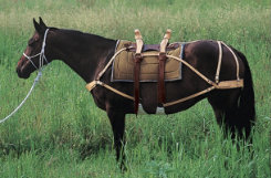 Weaver Deluxe Pack Saddle with Leather Best Price