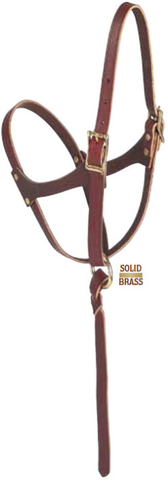 Weaver Figure 8 Foal Halter Best Price