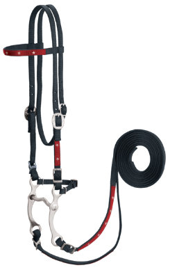 Weaver Old Glory Bridle Best Price