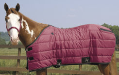 Weaver Heavyweight Quilted Winter Stable Blanket (300 Grams) Best Price