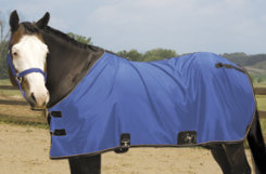 Weaver Lightweight Nylon Horse Turnout Sheet Best Price