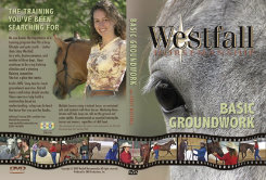 Weaver Stacy Westfall Basic Groundwork DVD Set Best Price