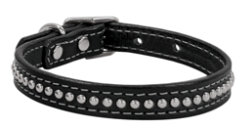 Weaver Back in Black 5/8 Dog Collar Best Price