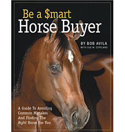 Be a Smart Horse Buyer by Bob Avila