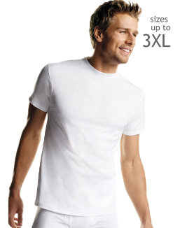 Hanes Men's White TAGLESS® Crewneck Undershirt 5-Pack men Hanes