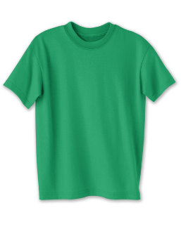 Hanes Kids' ComfortBlend® EcoSmart® Crewneck youth Hanes