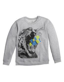 Boy's Graphic Crew Sweatshirt w/ FreshIQ youth Hanes