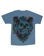 Hanes Men's Native Skull Graphic Tee
