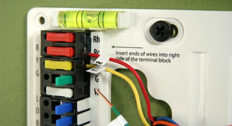 Insert wires into terminal blocks
