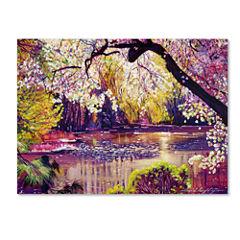 Central Park Spring Pond Canvas Wall Art
