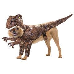 Animal Planet Raptor Pet Costume - X-Small