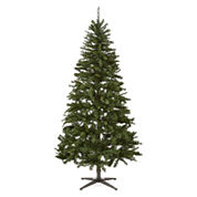 North Pole Trading Co. 6.5' Dakota Pre-Lit Pine Tree