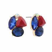Liz Claiborne Cluster button Multi Color Stud Earrings