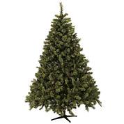 6.5' Aberdeen Tree