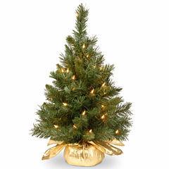 National Tree Co. 2 Foot Majestic Fir Pre-Lit Christmas Tree