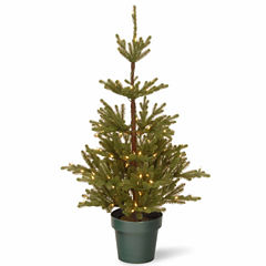 National Tree Co. 4 Foot Imperial Spruce Potted Pre-Lit Christmas Tree