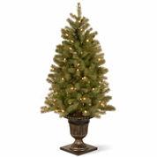 National Tree Co 4 Feet Downswept Douglas Fir Pre-Lit Christmas Tree