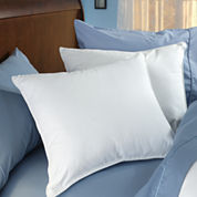 Euro Pillow 2-Pack