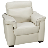 Delaney Leather Power Recliner