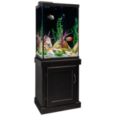 Newport 47 Gallon Fish Tank