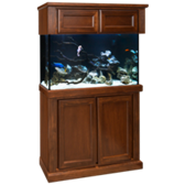 Cambridge 90 Gallon Fish Tank