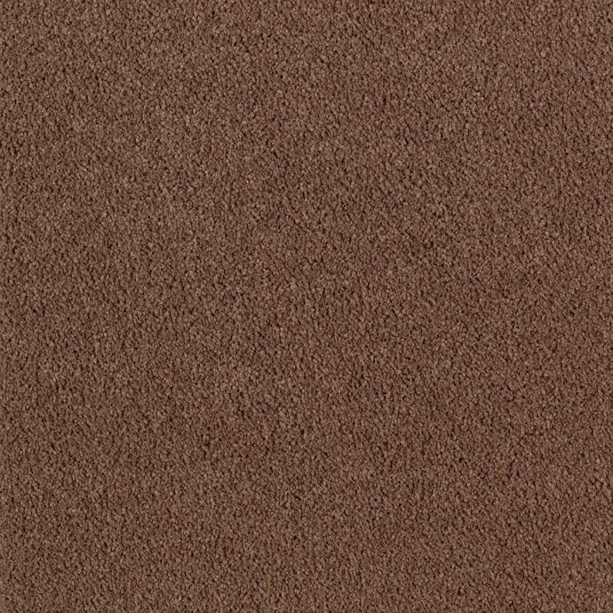 Lifetime Luxury Sequoia              9861