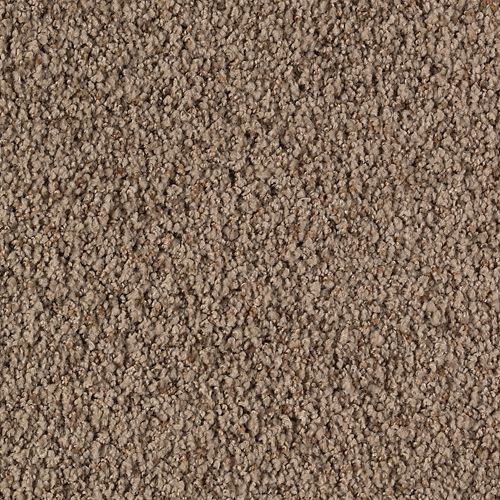 Mohawk Industries Graceful Presence November Foliage Carpet - Orland Park, Illinois - Sherlocks Carpet & Tile