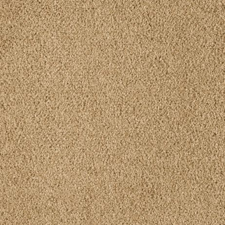 Soft Extravagance Palm Desert 9826