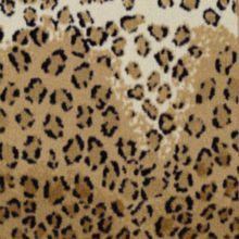 Magestic Leopard