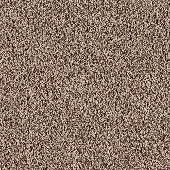 Carpet CasaBella 43492-9728 TribalSafari
