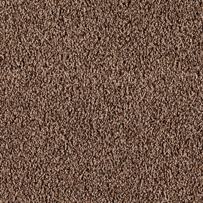 Carpet CasaBella 43492-9878 MilkChocolate