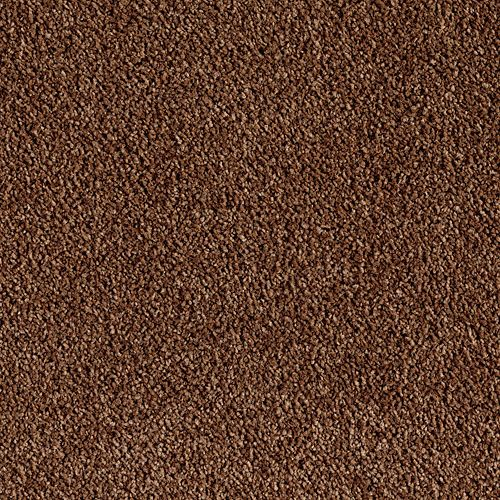 Wasatch Front Mobile Carpets Carpet Flooring Price