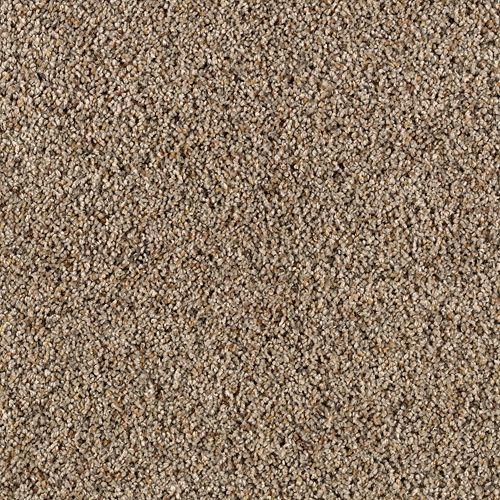 Carpet AmazingApproach 63498-6756 BalsamBark