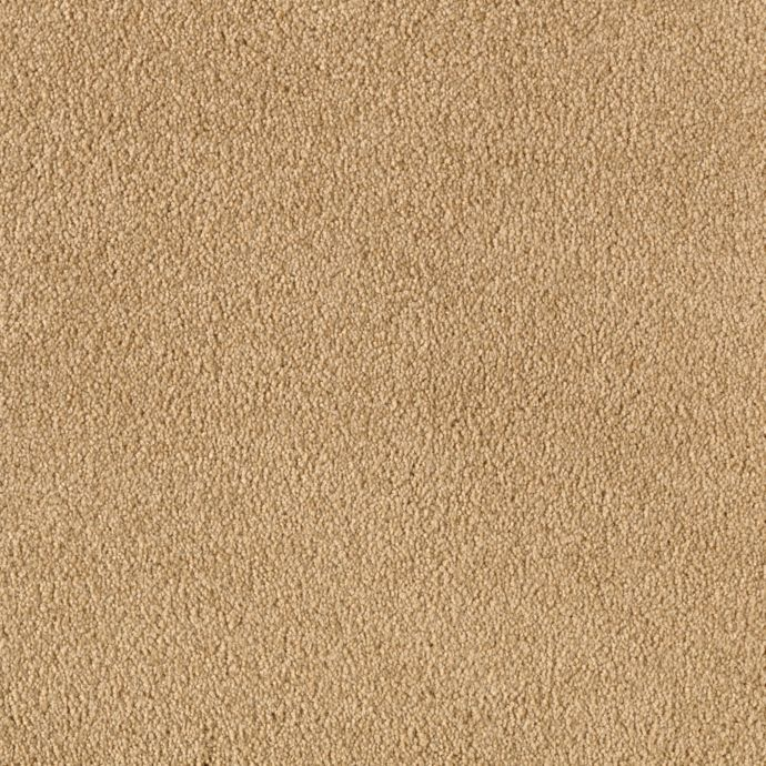 Carpet BeautifulDestiny 43585-9832 BayRum