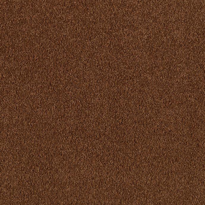 Maison Chestnut 9882