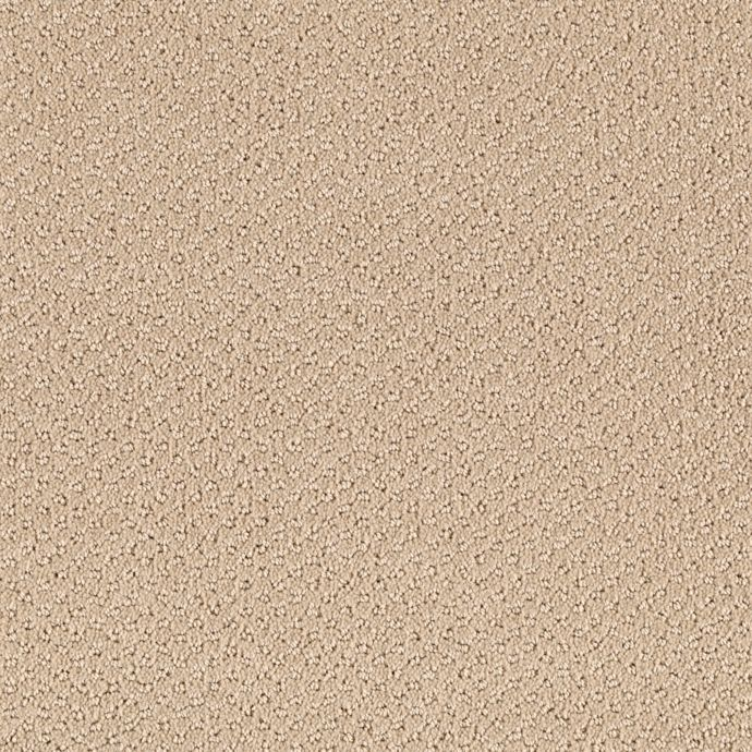 Carpet AshtonHeights 63533-9733 Seashell