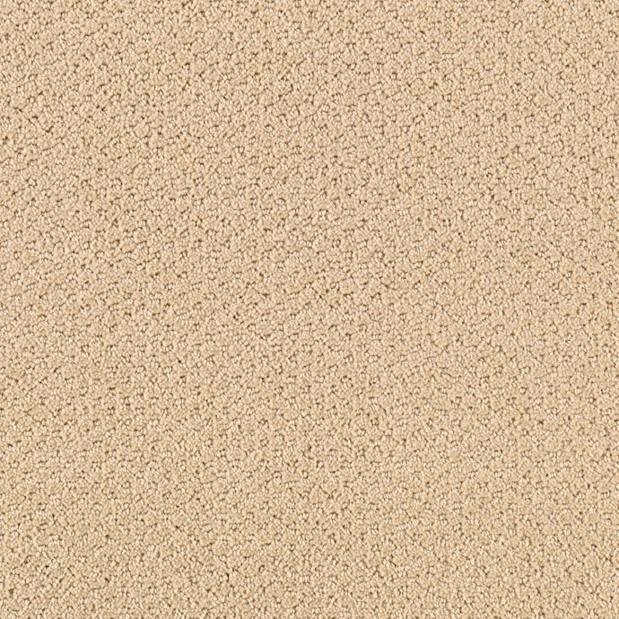 Carpet AshtonHeights 63533-9737 Lariat