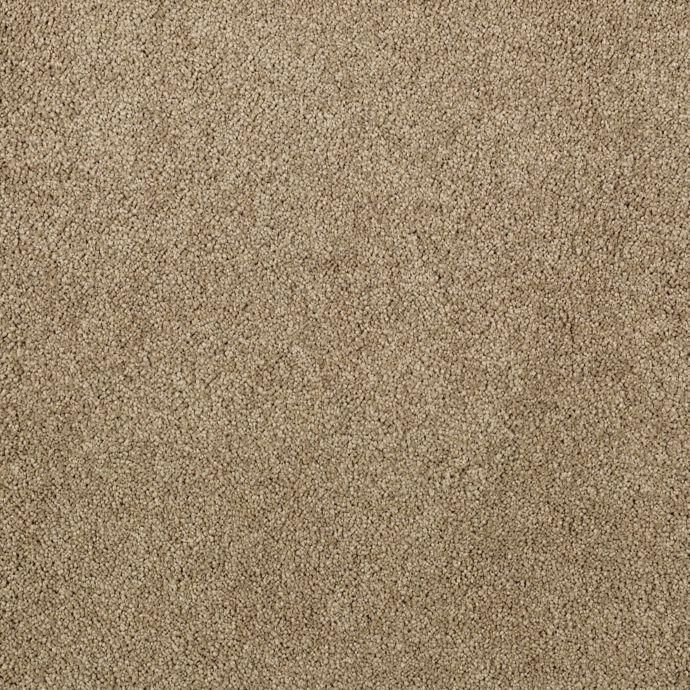 Elegantly Soft Desert Scape 9839