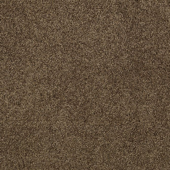 Elegantly Soft Due West Brown 9879